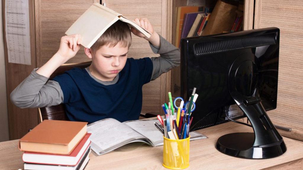 Дистанционное обучение может быть только вспомогательным